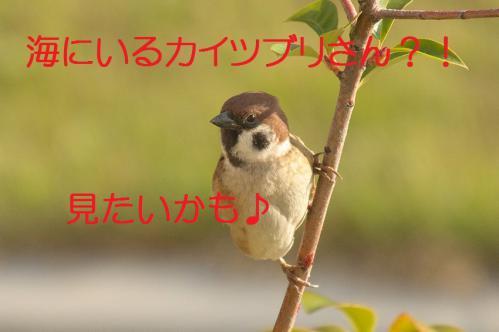 020_20121130220420.jpg