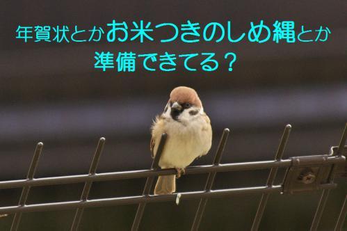 020_20121201214659.jpg