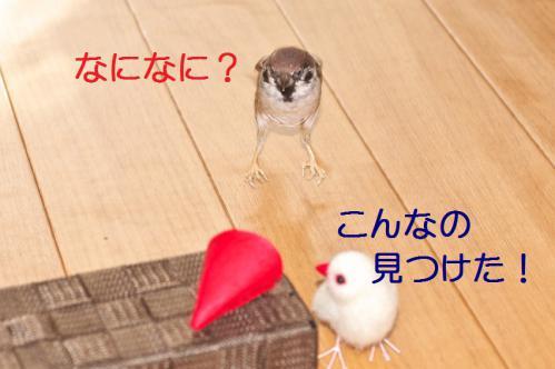 020_20121203223834.jpg