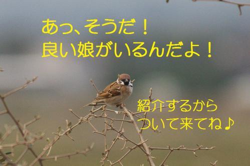 020_20121222193830.jpg