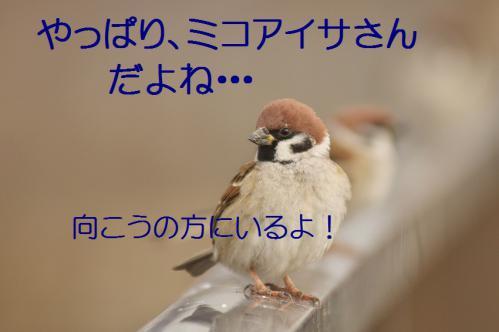 020_20121227213447.jpg
