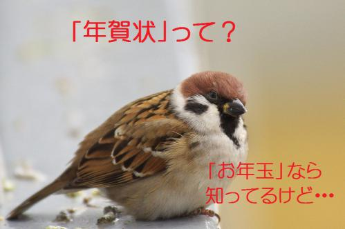020_20121228215043.jpg