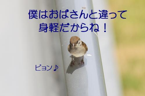 050_20120711222457.jpg