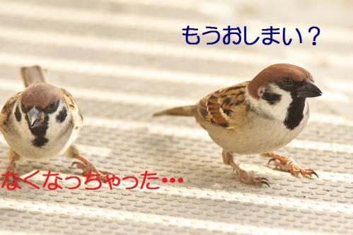 050_20121125192043.jpg