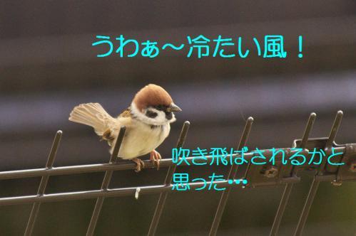 050_20121201214757.jpg