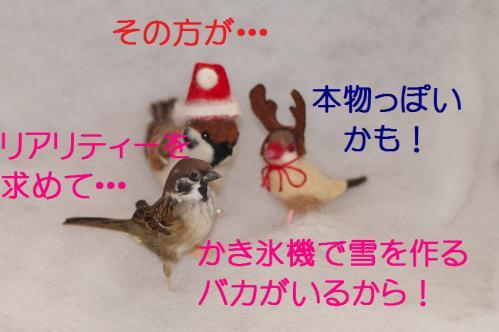 050_20121223183856.jpg