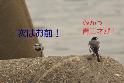 055_20121205220923.jpg