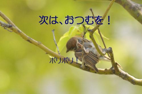 060_20120531224805.jpg