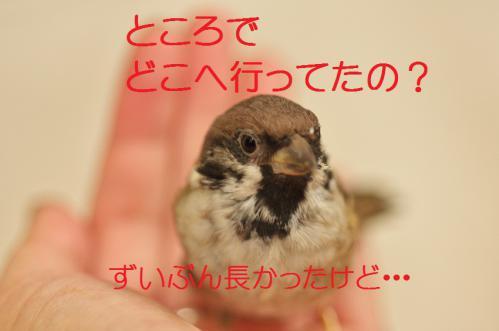 060_20120928220258.jpg