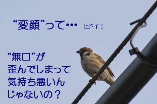 060_20120930203647.jpg