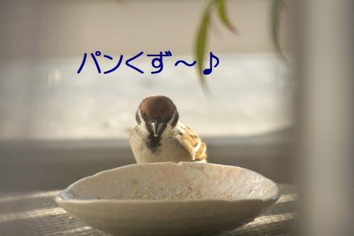 060_20121202191704.jpg