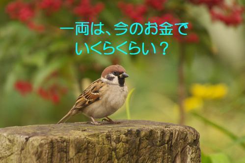 060_20121228215738.jpg