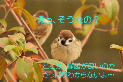 060_20130105210955.jpg