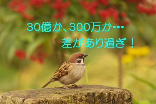 070_20121228215741.jpg