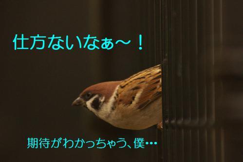 080_20121206222501.jpg