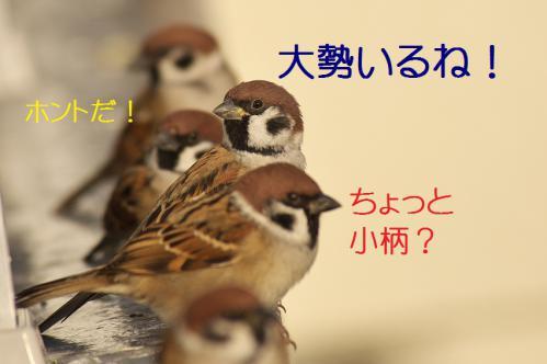 083_20121221215023.jpg