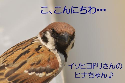 090_20120612215111.jpg
