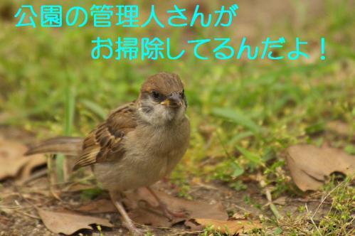090_20120630222440.jpg