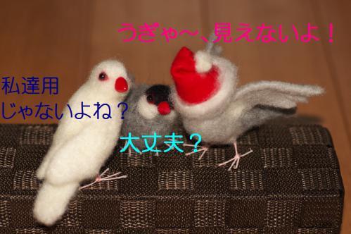 090_20121203224114.jpg