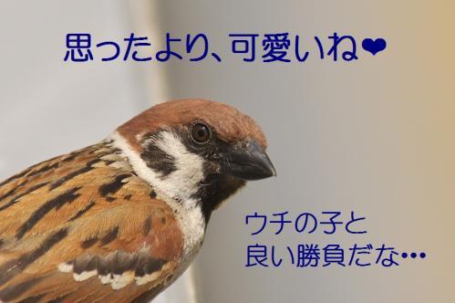 100_20120612215110.jpg