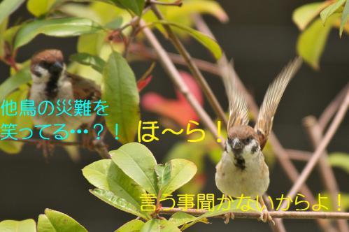 100_20120711222548.jpg