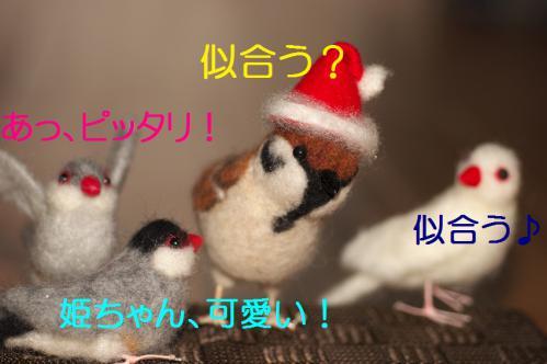 100_20121203224116.jpg