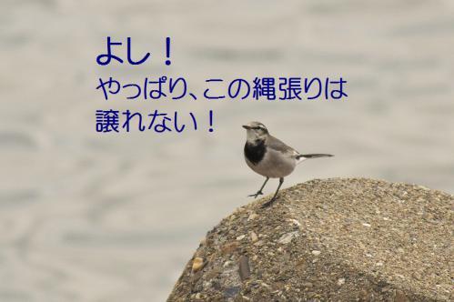 100_20121205221500.jpg