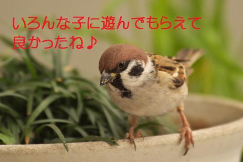 100_20121222194650.jpg
