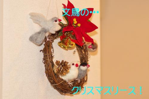 100_20121223184102.jpg