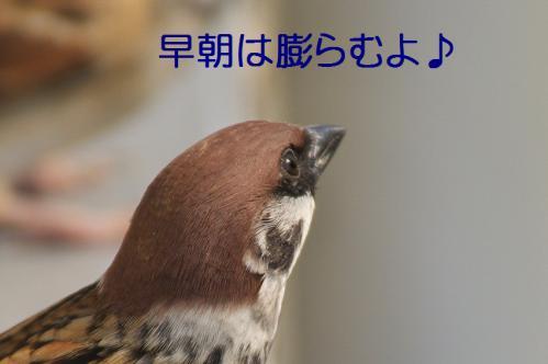 120_20121031214908.jpg
