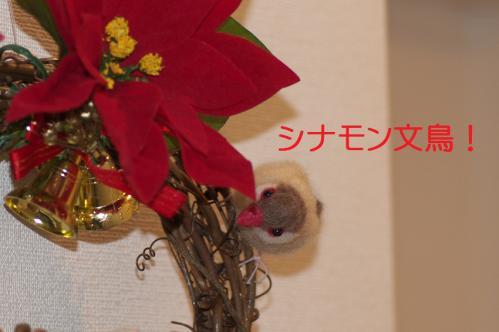 120_20121223184110.jpg