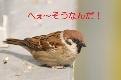 130_20120426195438.jpg
