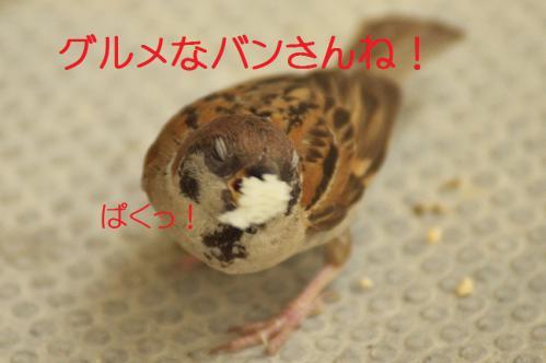 130_20120821211009.jpg