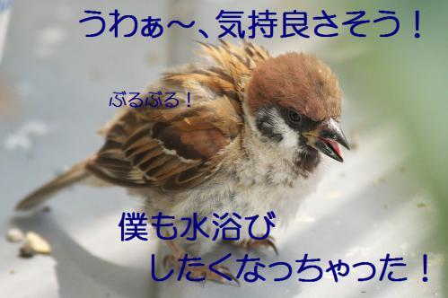 130_20120822221912.jpg