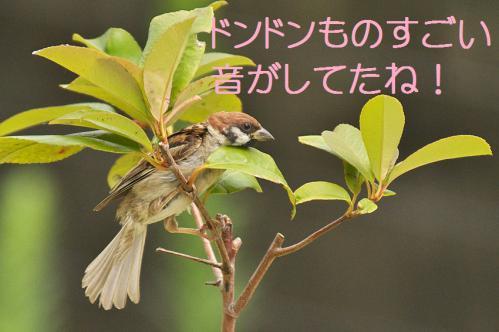 130_20120831220131.jpg