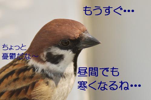 130_20121031215031.jpg