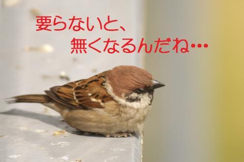 140_20120426195438.jpg