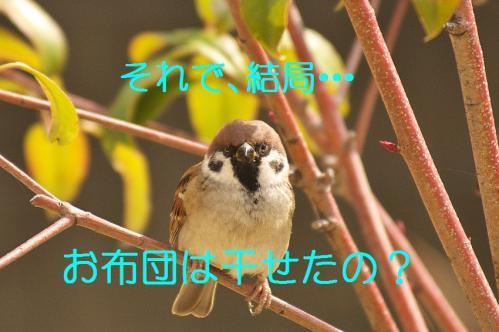 140_20121206193600.jpg