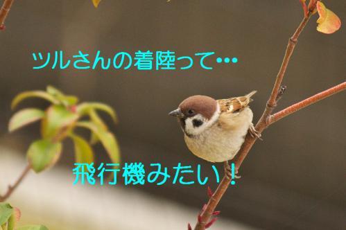 140_20121216203010.jpg