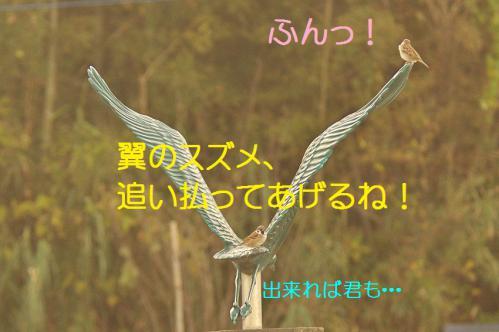 140_20121217024707.jpg