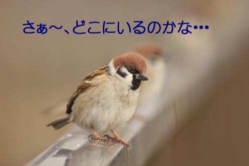 140_20121227213642.jpg