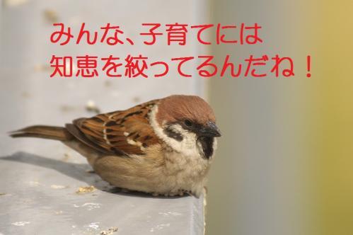 150_20120426195436.jpg