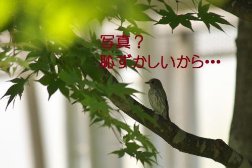 150_20120930203804.jpg