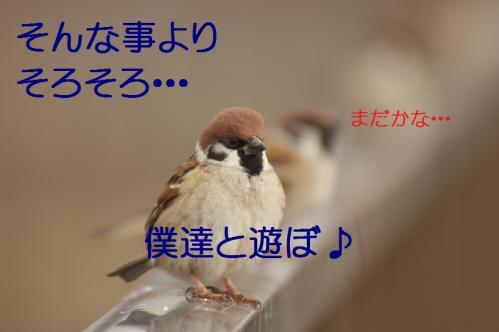150_20121227213648.jpg