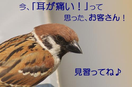 170_20120612215222.jpg