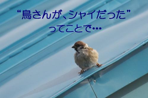 170_20120930203803.jpg