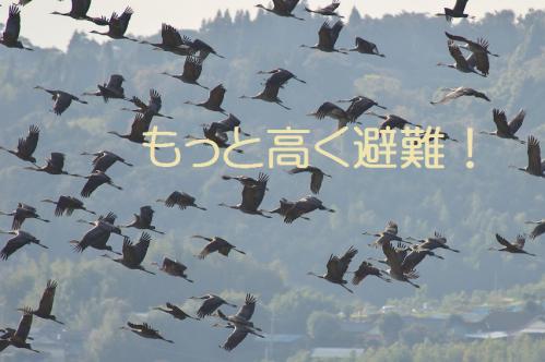 180_20121216203345.jpg