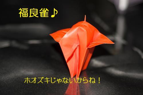 180_20121222194801.jpg