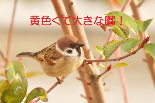 180_20130121215609.jpg