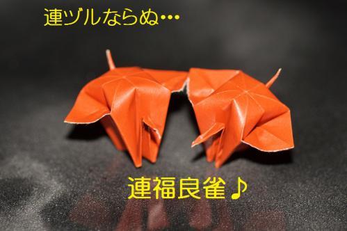 190_20121222194804.jpg